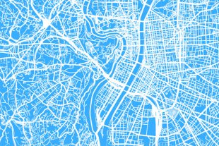 cartographie Lyon
