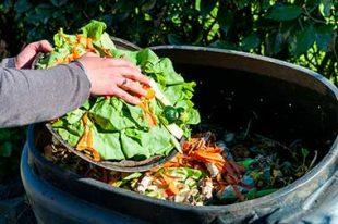 Développement durable tri des déchets