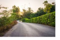 Winding country pathway with sunrise or sunset. The street is bu