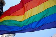 LGBT gay