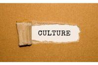 culture-fentetre-Michail Petrov-AdobeStock 600X400