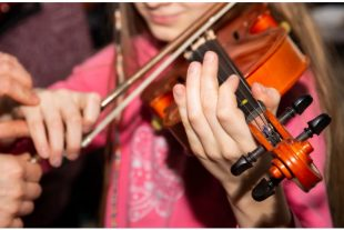 violon-enseignementmusical-hayo-AdobeStock