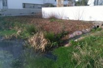 amenagementpluvial