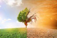 changement climatique