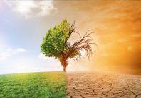 Les collectivités ne peuvent pas se revendiquer « neutres en carbone », selon l'Ademe