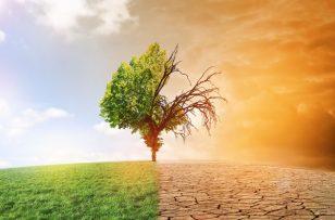 Les futurs Contrats de plans Etat-Régions sont-ils «bons» pour le climat ?