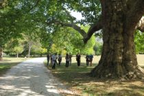 Ateliers d'utilisation du Barème de l'arbre lors de l'Arborencontre du 17 octobre organisée par le CAUE 77 au Parc de Rentilly à Bussy-Saint-Martin (77).