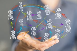 collaboration-vegefox.com-AdobeStock