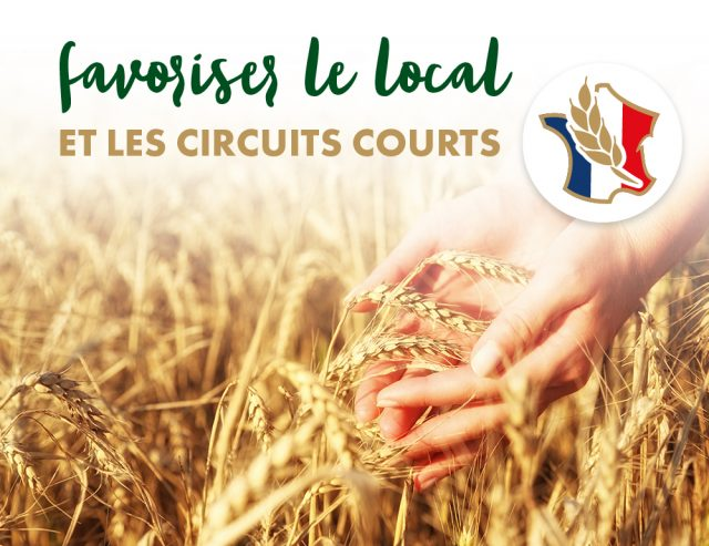 visuels-article-blé-FR-v4_enjeux-local