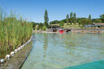 Lac des Sapins (Beaujolais)