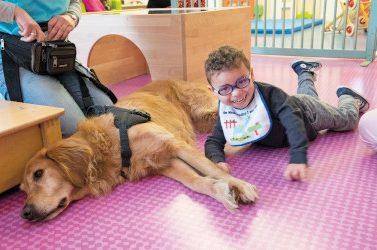 calinotherapie à la creche rosenberg, avec chien iska , animatrice, et petits enfants,
