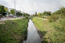 Travaux nettoyage rivière Bièvre
