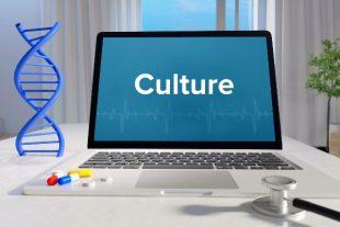 culture-numerique-MQ-Illustrations-AdobeStock_319367779