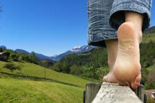 tourisme-agriculture-nature-une