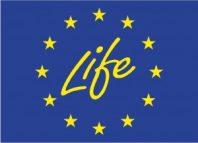 LIFE_logo-300x217