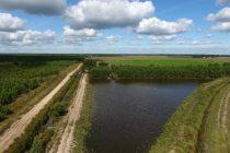 Médoc lacs zones humides (1)