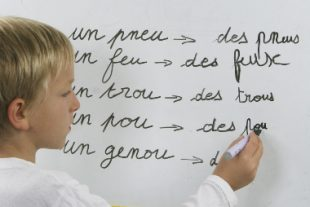 Concours - orthographe