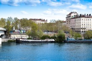 Plantation quai Sarrail à Lyon