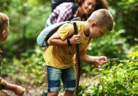 Enfant nature - développement durable