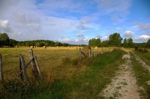 Chemin vers Angé