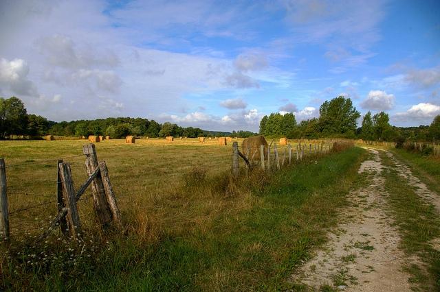 Développer l'offre de transports en zone rurale, un véritable enjeu