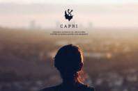 CAPRI radicalisation