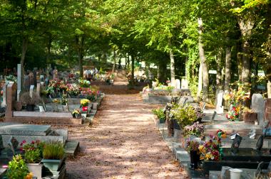 Un cimetière, trois zones, zéro phyto
