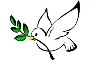 Colombe-paix-UNE