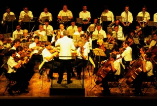 Culture Concert Musique