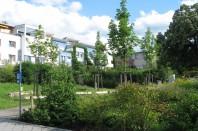 Ecoquartier_Vauban_Freibourg4