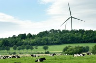 Des députés de l'opposition accusent des députés de la majorité d'entraver, par leurs amendements, le développement des éoliennes parmi les énergies renouvelables