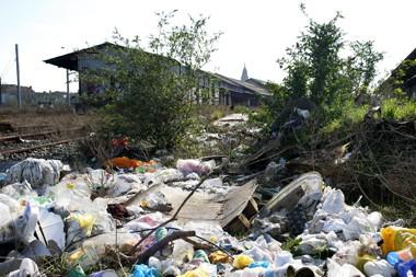 Environnement et déchets sauvages