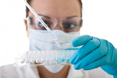 laboratory work - research