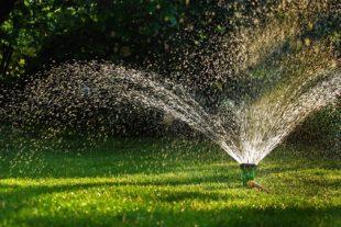 arrosage robinet jardin secheresse herbe mouillee eau