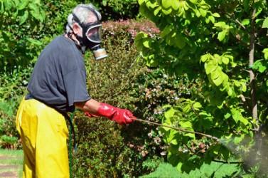 Gardening - Garden Spray