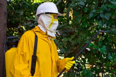 Pesticides agricoles : comment les communes peuvent-elles protéger leurs habitants ?