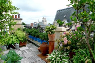Tout comprendre sur : les toitures terrasses