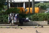 SDF, sans domicile fixe