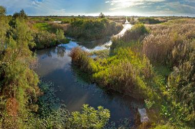 Le marais Vernier accède à la labellisation internationale Ramsar sur les zones humides