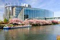 European Parliament in Strasbourg under the cherry Blossom trees