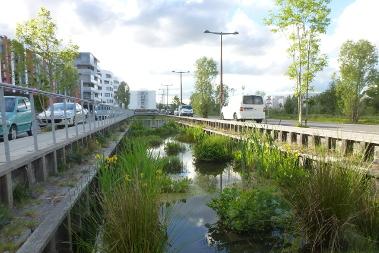 Dix conseils pour réaliser un bassin d'agrément avec les eaux pluviales