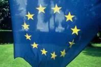 Drapeau européen avec herbe
