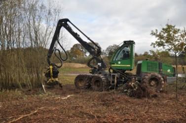 L'abatteuse forestière arrache les saules entiers. Grâce à son bras articulé, elle coupe ensuite les souches qu'elle range séparément des branches.