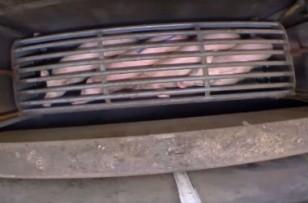 La Cour des Comptes dénonce la gestion catastrophique des abattoirs publics