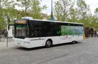 bougenbus