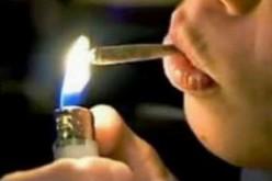 cannabis_Ok