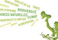 A quoi sert le conseil départemental de l'environnement et des risques sanitaires et technologiques ?
