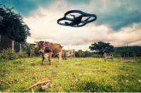 drone-une