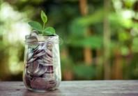 Dette : quel prix donner à la recherche de « green » ou de sens ?