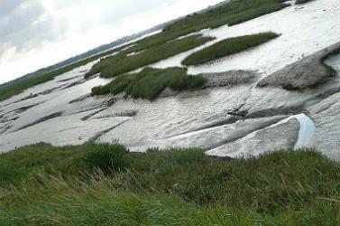 estuaire-orne-une